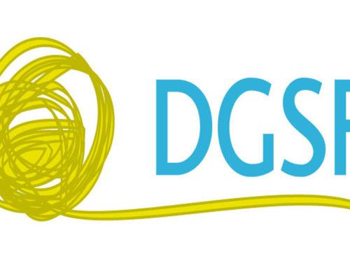 Anerkennung durch die DGSF