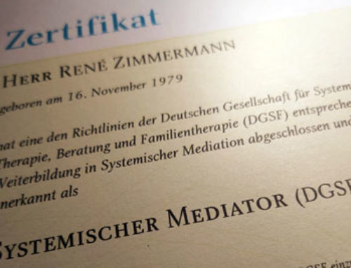 Anerkennung als Systemischer Mediator 2